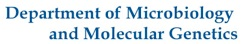 Department of Microbiology and Molecular Genetics